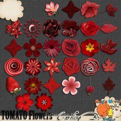 CarolineB_ATomatoColorSerie_Flowers  http://carolineb.fr/