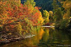 Autumn at Nason Creek - Washington State