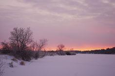 Sunset in Männiku. Wintery landscape, Estonia.