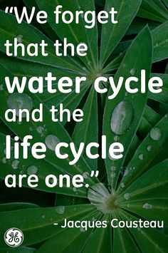 Can you imagine your life without water? Use this quote to think . Jacques Yves Cousteau, Water Quotes, World Water Day, Water Life, Water Cycle, Life Cycles, Change The World, Mother Earth, Climate Change