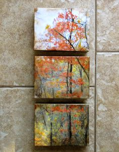 I printed my original photos of a tree onto 100% cotton paper. I then applied layers of encaustic and oil pastel. The cradled board makes it stand out from the wall by 1.5 inches. The three pieces each measure 5.5x7 inches.