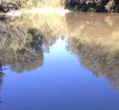 Riflessi del fiume salvato