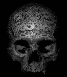 Tribal Skull and Dayak, Indonesia 3 and Asmat, Papua 5 and Naga, India Palawan, Philippines Crane, Statues, Real Skull, Skull Hand, Art Carved, Carved Skulls, Skull Decor, Human Skull, Bone Carving
