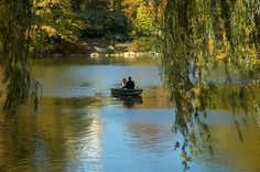 David Nieves  Central Park Boaters