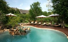 View deals for Impodimo Game Lodge. Guests enjoy the location. Madikwe Game Reserve is minutes away. Breakfast, WiFi and parking are free at this lodge. Game Lodge, National Stadium, Last Game, Hotel Interiors, Game Reserve, Pool Decks, Future Travel, Africa Travel, Private Pool