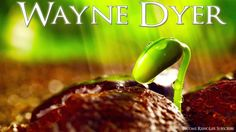Wayne Dyer - How Your Stress Is Testing You - YouTube