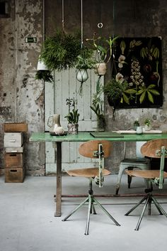 3 Valiant Cool Tips: Natural Home Decor Ideas Feng Shui natural home decor earth tones green.Natural Home Decor Rustic natural home decor earth tones living rooms.Natural Home Decor Living Room. Hanging Plants, Indoor Plants, Hanging Gardens, Hanging Baskets, Hanging Flowers, Indoor Gardening, Potted Plants, Hanging Terrarium, Hanging Chairs