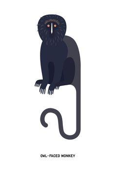 Monkeys - Laura Edelbacher Graphic Design & Illustration