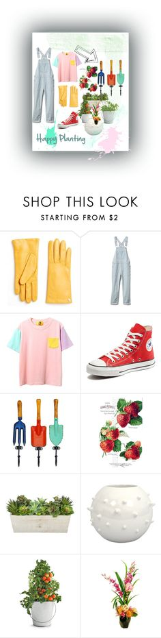 """""""Happy planting"""" by the-crazy-dog-lover ❤ liked on Polyvore featuring Furla, Gap, Converse, WALL, Potting Shed Creations and Designs by Lauren"""