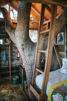 This treehouse is my dreamhouse. Photo by Daniel Dent