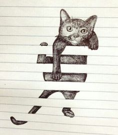 Cute illusion sketching
