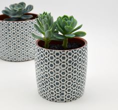 Patterned terracotta planters by Susan Simonini