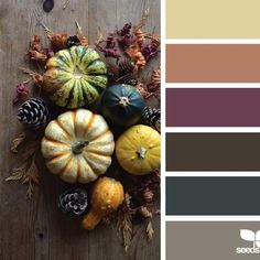 Bring #autumn hues indoors by choosing accent pieces that are rich in color [Link in bio to shop] #design #interiordesign #homedecor via @designseeds
