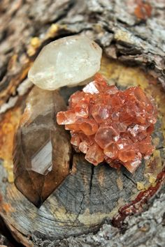 Love Love.~Quartz Point, Smokey Quartz Point, Aragonite Cluster