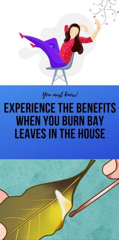 Experience The Benefits When You Burn Bay Leaves In The House - Carola Health And Fitness Expo, Health And Wellness Coach, Health And Fitness Articles, Wellness Fitness, Health Advice, Fitness App, Natural Health Tips, Health And Beauty Tips, Healthy Detox