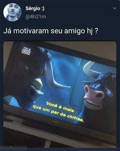 Memes Brazilian kpop Memes Hilarious true funny animals memes Dank Meme You are in the right place a Animal Jokes, Funny Animal Memes, Funny Animals, Funny Quotes, Funny Memes, Memes Humor, Memes Status, Kpop Memes, Meme Meme