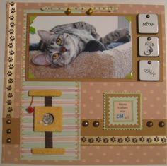 Home is where the cat (KIRA) is. made by N. Hornberger