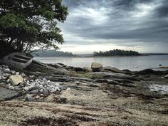 A Stormy Summer Day at Wolfe's Neck Woods State Park in Freeport. http://www.visitmaine.net/page/96/freeport-maine