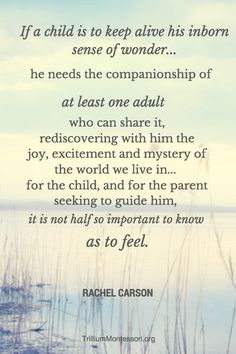 Rachel Carson Quote (the post includes free nature journal prompts printable)