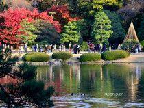 Επίσκεψη στον Κήπο Rikugien - http://www.iaponia.gr/?p=475