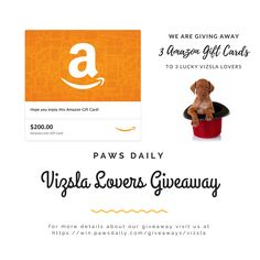 Paws Daily Vizsla Lover Giveaway