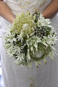 Funky wedding bouquet with native flowers - White Protea Kings, Flannel Flower… Bright Wedding Flowers, Cheap Wedding Flowers, Rustic Wedding Flowers, Bridal Flowers, Flower Bouquet Wedding, Floral Wedding, Trendy Wedding, Bouquet Flowers, Wedding Blue