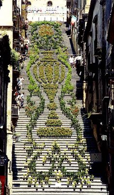 .Living Flowers Staircase @ Sicily.