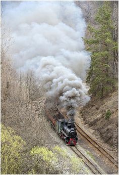 The double track narrow gauge system at Banovici, in Bosnia. Old Steam Train, Amazing Gifs, Sight & Sound, Thomas The Tank, Photography Gallery, Train Tracks, Bosnia, Cool Places To Visit, Wanderlust