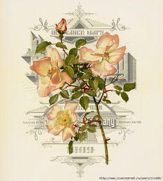 Vintage Rose. Обсуждение на LiveInternet - Российский Сервис Онлайн-Дневников