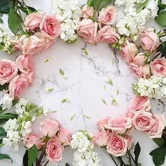 Pretty pink and white flowers Beautiful Landscape Wallpaper, Beautiful Flowers Wallpapers, Beautiful Roses, Cute Wallpapers, Flower Backgrounds, Flower Wallpaper, Red Color Background, Birthday Frames, Pink And White Flowers