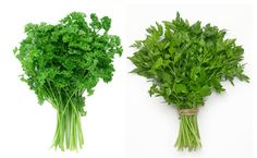 Parsley, Decoupage, Planters, Herbs, Vegetables, Tips, Gardening, Creative, Advice