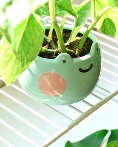 Shopzoki Diy Clay, Clay Crafts, Small Plants, Potted Plants, Keramik Design, Clay Art Projects, Indie Room, Cute Frogs, Cute Clay