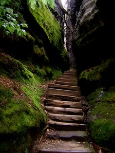 Canyon Steps in The Black Forest, Germany. The Black Forest is a wooded mountain range in Baden-Württemberg, southwestern Germany. It is bordered by the Rhine valley to the west and south. The highest peak is the Feldberg with an elevation of 4,898 ft.