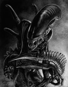 Xenomorph by ~freakingfabulous