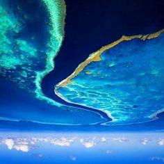 Down Under #oz #greatbarrierreef #reef #ocean #oceanlife #upsidedown #loose #downunder #pom #nautical #paradise #coral #wander #wanderlust #luxurytravel #luxurylifestyle #lifestyle #healthy #entrepreneur #investment #LA #NYC #miami #miamibeach #melbourne #sydney #london #lostboy #exumas #bahamas by jbusterbahamas http://ift.tt/1UokkV2