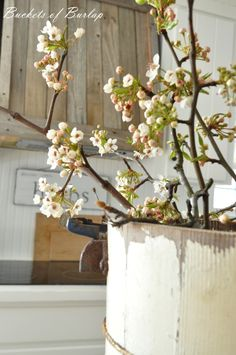 Reclaimed wooden vent hood. Farmhouse kitchen with pear blossoms