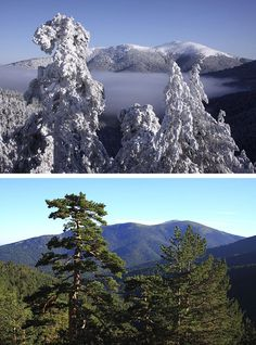 La Sierra de Guadarrama forma parte del Sistema Central, una larga cadena montañosa, de 500 kilómetros de longitud, que cruza de este a oeste el centro de la Península Ibérica.