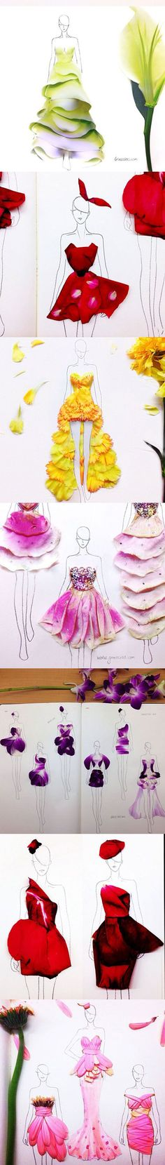 (••).                                                             Fashion Illustrations With Real Flower Petals As Clothing
