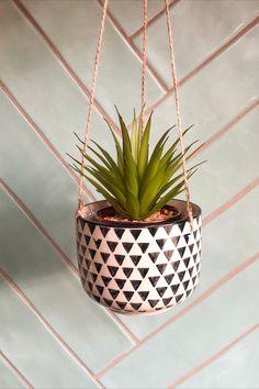 Spiky Succulent, Hanging Planters, Contemporary Design, House Warming, Monochrome, Succulents, Plants, Beautiful, Black