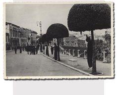 Hanged Italian Partisans Bassano del Grappa ora viale dei Martiri