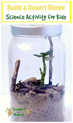 Learning about biomes? This fun science activity shows you how to build a desert… Learning about biomes? This fun science activity shows you how to build a desert biome in a jar! Perfect for classrooms or homeschool! Science Activities For Kids, Preschool Science, Stem Activities, Science Ideas, Children Activities, Elementary Science, Science Classroom, Teaching Science, Science Education
