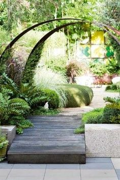 A small-leaved vine (Meulenbekia) is grown up the inside of the arch, held in place with fishing line and regularly trimmed. The steel rainbows end in balls of clipped box (Buxus), cardboard palms (Zamia furfuracea) and Canberra grass (Scleranthus biflorus) fashioned into natural green floor cushions.
