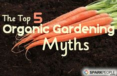 Do you think organic gardening is more expensive, less fruitful, or lower quality than conventional gardening?