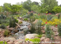 Digging » Support Your Independent Nursery Month: The Natural Gardener
