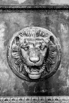 Lion Head Figure on the Bronze Door of Nashville's Parthenon (RQ0A0970)