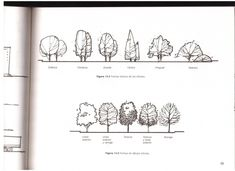 TECHOS            ARBOLES                                 PAVIMENTOS         TEXTURAS #landscapearchitecture #LandscapeSketch #LandscapingSketch