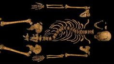 """Would you look at the back on him? """"Nobody dared / To say a word, / And Crookback Dick / Became Richard III."""""""