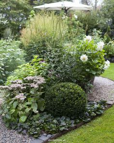 To plan a garden design that you will love, it is important to do some research and brainstorming before digging. Coming up with the right garden design does take time, so it is worth doing this up front. Landscape Design, Garden Design, Edging Plants, Vintage Garden Decor, Pot Plante, Shade Garden, Flower Beds, Dream Garden, Backyard Landscaping
