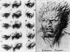 charles le brun and system on physiognomy