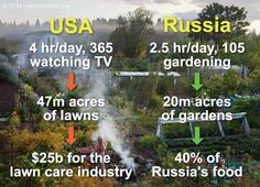 While many in the world are completely dependent on large scale agriculture, the Russian people feed themselves [www.naturalhomes.org/naturalliving/russian-dacha.htm]. Their agricultural economy is small scale, predominantly organic and in the hands of the nation's people. In 2003, the Russian government signed the Private Garden Plot Act into law, entitling citizens to private plots of land for free.